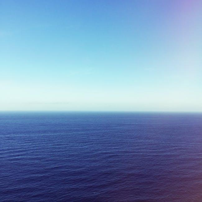 Ocean Cello